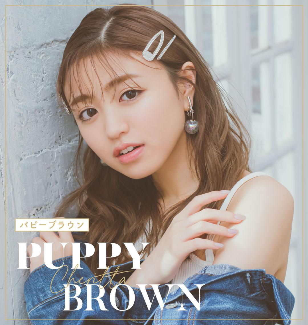 puppy brown(パピーブラウン)